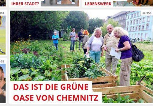 """Der Gemeinschaftsgarten der """"Gartenutopisten"""" an der Ecke Peterstraße / Hainstraße erhielt den 2. Preis."""